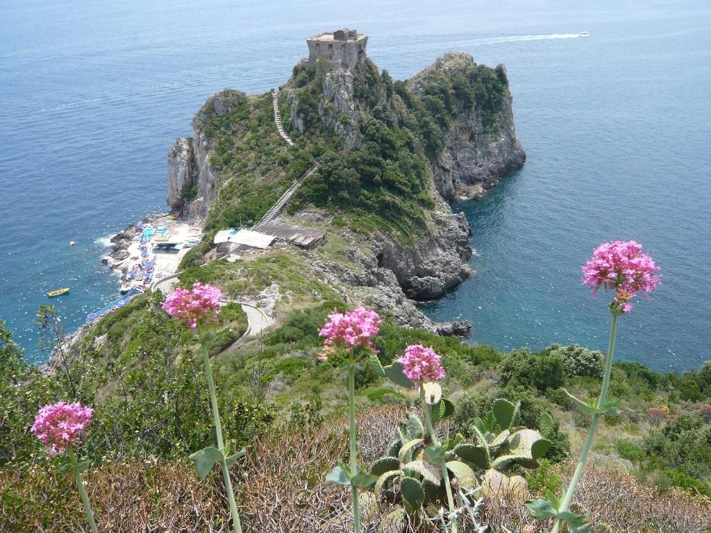 Find accommodation in Conca Dei Marini - The best Villas ...